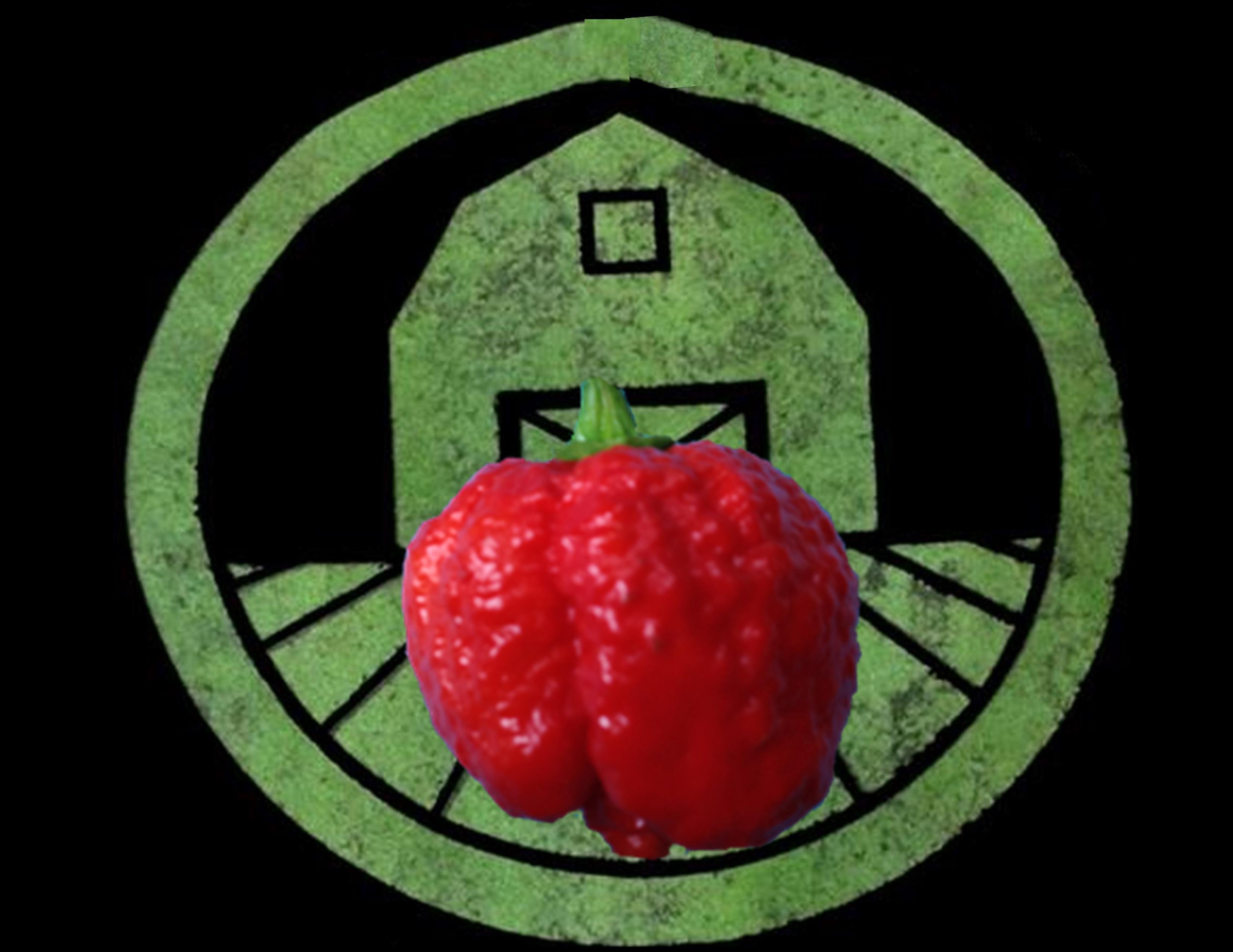 7 Pot Brain Strain Pepper | Tyler Farms