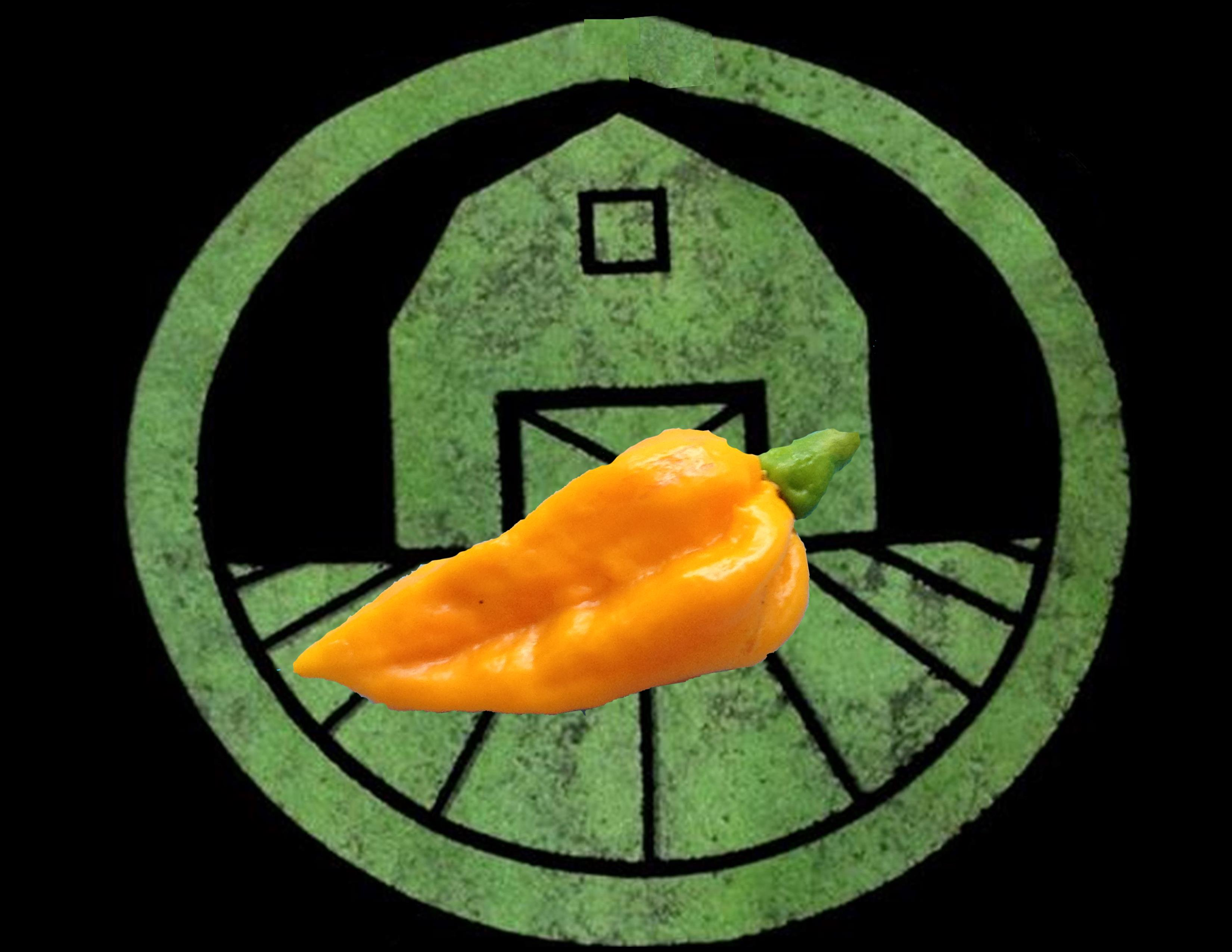 Fatalii Pepper | Tyler Farms