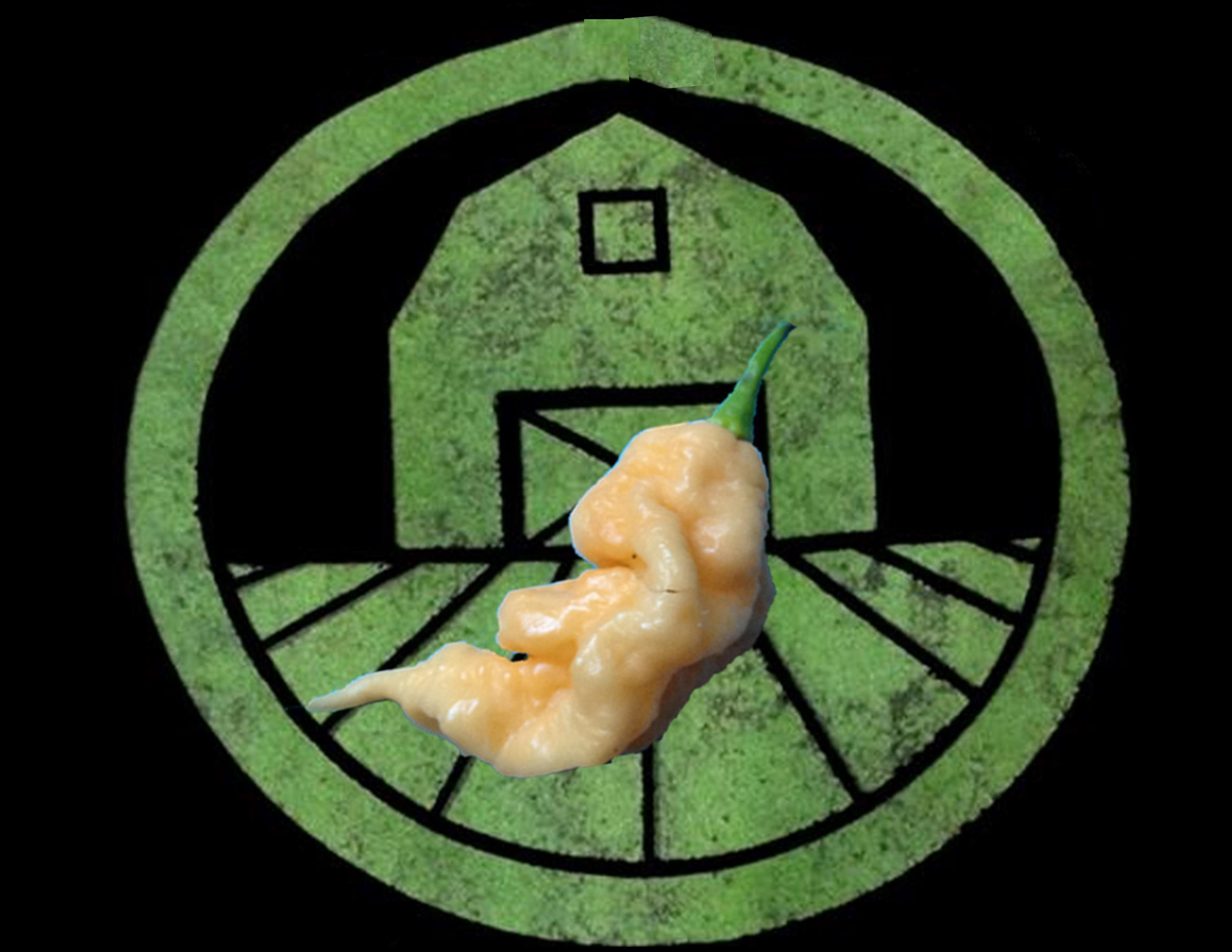 Peach Ghost Scorpion Pepper | Tyler Farms