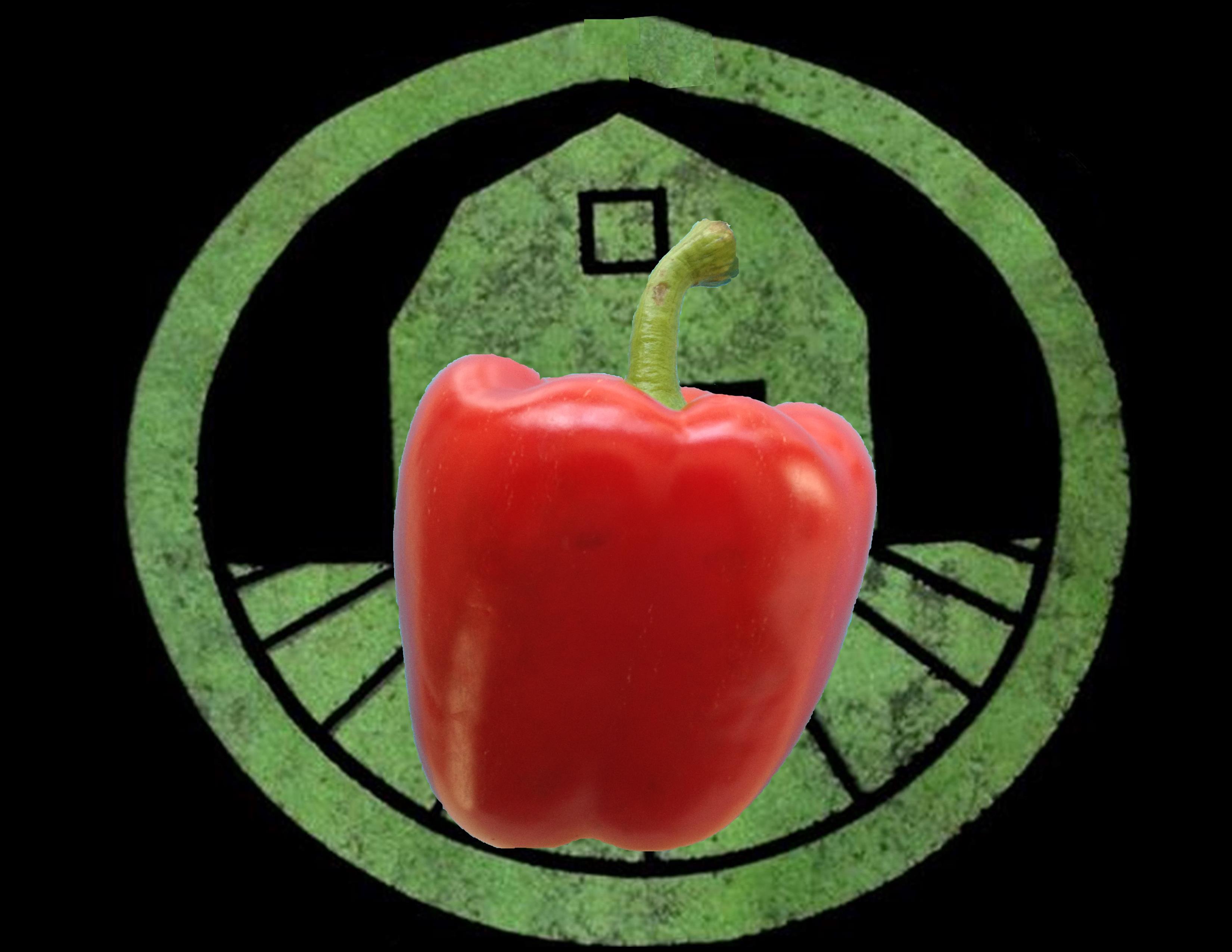 Red Bell Pepper | Tyler Farms