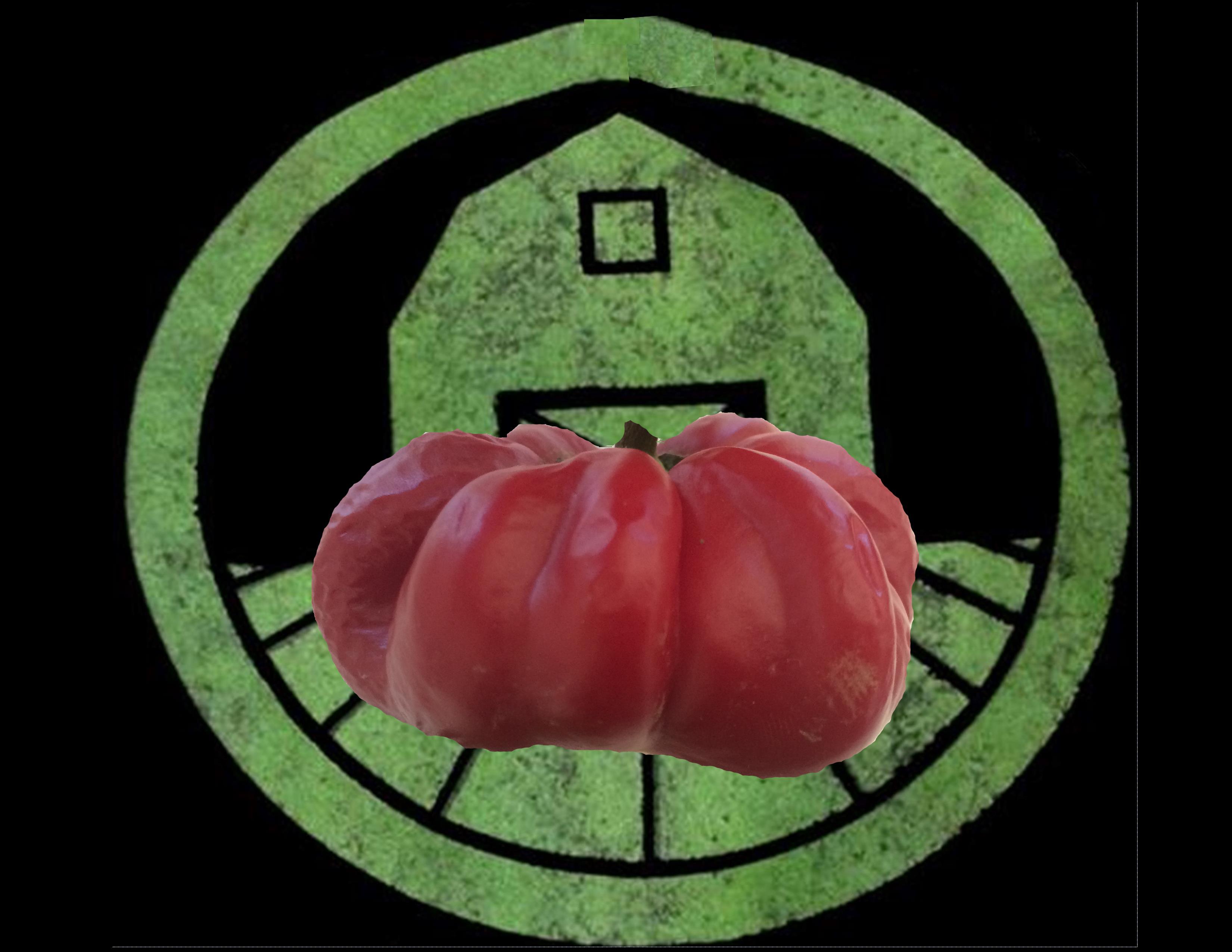 Ruffled Pimento Pepper | Tyler Farms