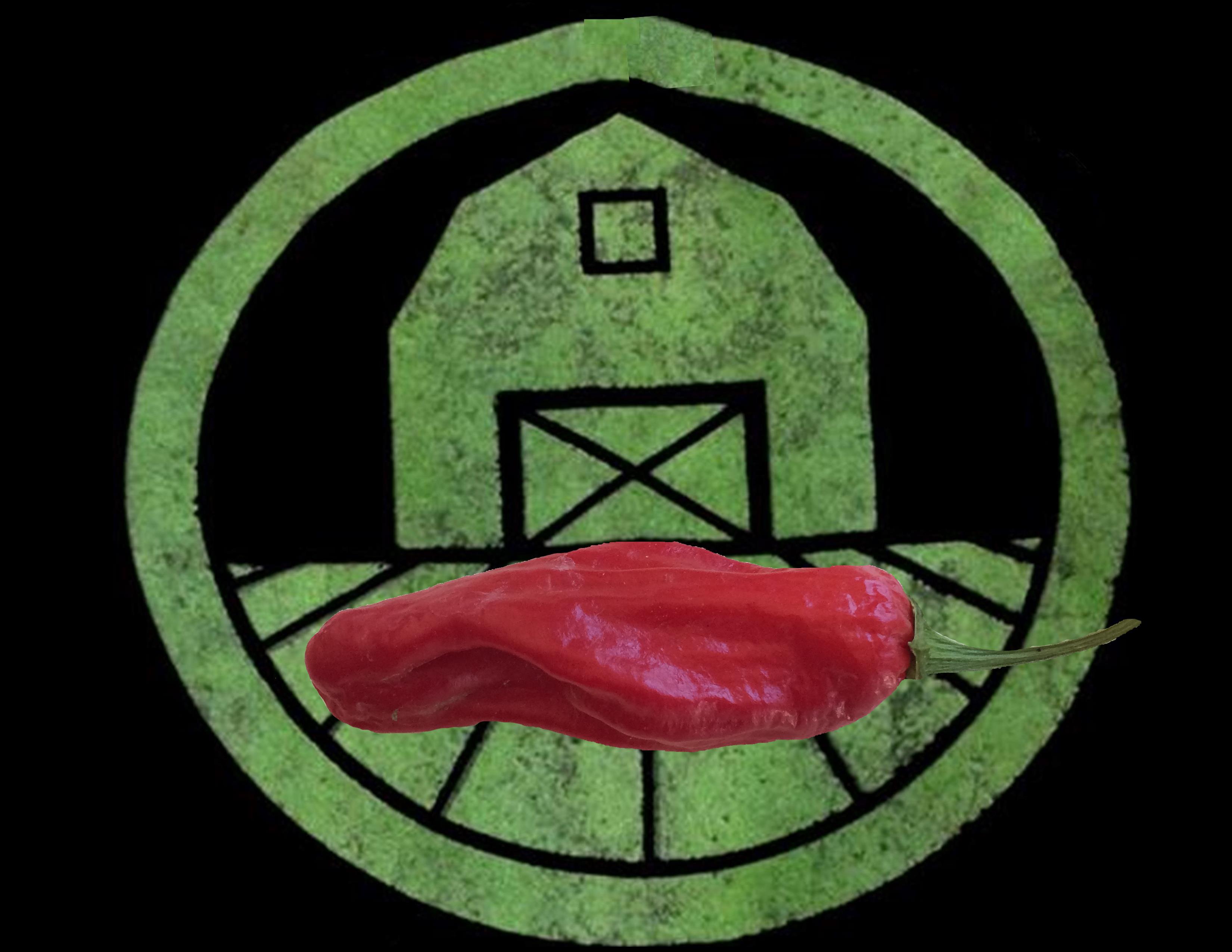 Shishito Pepper | Tyler Farms