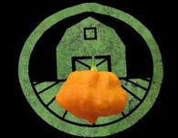 Yellow Scotch Brain Pepper | Tyler Farms