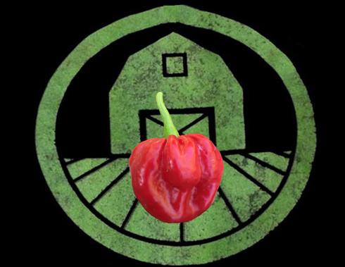 Red Scotch Bonnet Pepper   Tyler Farms