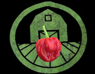 Red Scotch Bonnet Pepper | Tyler Farms