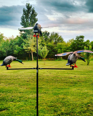 Tri-Fly Decoy Holder