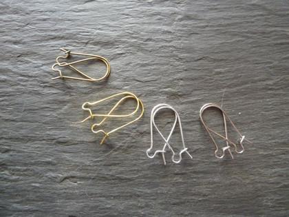Loop & Catch Earwires