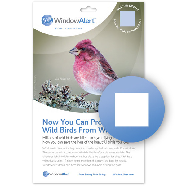 2-Pack Window Alert 4 Hummingbird Decals Protect Wild Birds