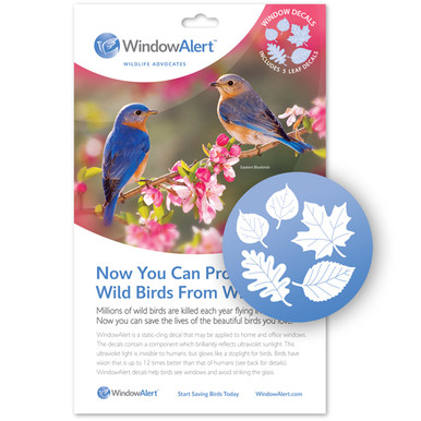 Leaf Medley Window Decal - Prevent Bird Strikes