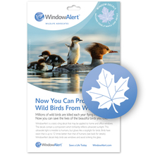 Maple Leaf Window Decal - Prevent Bird Strikes
