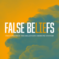 False Beliefs-USB