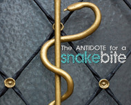 The Antidote for A Snake Bite-MP3