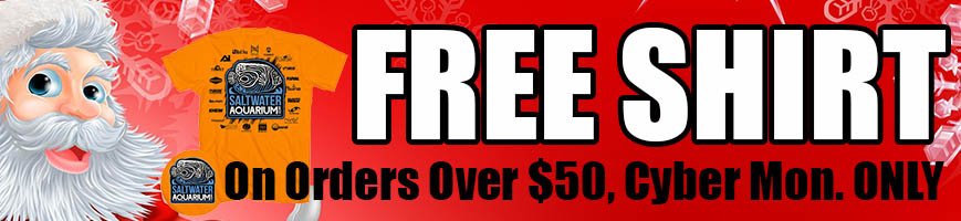 free-shirt-869x200.jpg
