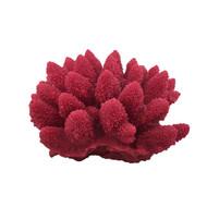 "Acorapora Humilis Rose (4.5"" x 4.5"" x 2.4"") - Small - Weco"
