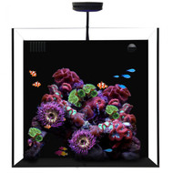 20 Gallon Starphire Cube +PLUS w/AI Prime & Flex Mount - Waterbox