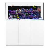 Reef PRO 190.5 White - Waterbox