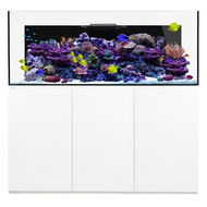 Reef PRO 230.6 White - Waterbox