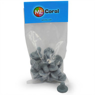 "1"" Grey Round Frag Plugs (20ct) - MECoral"