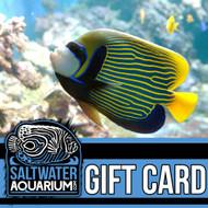 $500.00 Gift Certificate - SaltwaterAquarium.com