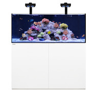 Reef 130.4 White +Plus Edition - Waterbox
