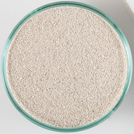 Oolite Ocean Direct Live Reef Sand (20 lb) 0.25 - 1.0 mm - Caribsea