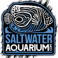 "6"" Large SaltwaterAquarium.com Logo Sticker on Clear - SAQ.com"
