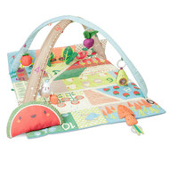 Skip Hop Farmstand Baby Activity Gym - Watermelon Tummy Pillow