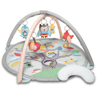 Skip Hop Treetop Friends Baby Activity Gym Online