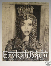 ERYKAH BADU - WARFIELD - RON DONOVAN - 2009 - FIREHOUSE - POSTER