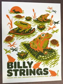 BILLY STRINGS - 2021 - GARFIELD PARK - INDIANAPOLIS - JOHN VOGL - ARTIST PROOF - POSTER