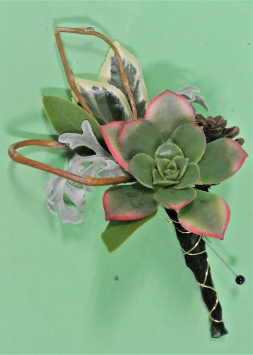 Succulent Boutonniere designed uniquely at Earle's Loveland