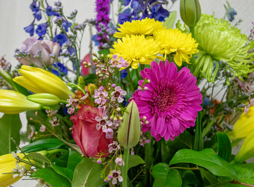 Want something truly unique? Let us design your arrangement! A bold variety of fun, fresh, bright flowers for Mom. She is sure to be surprised with this beautiful fresh and fun bouquet of flowers! Designed with love from your Loveland Florist.