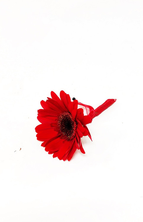Red gerbera boutonniere to match your bold red gerbera bridal bouquet!
