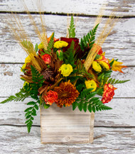 A Mix of fall fresh flowers designed in a fun wood cube! Perfect for the just thinking of you arrangement
