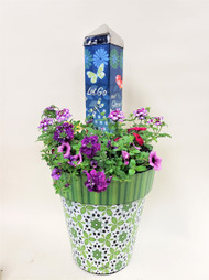 Send her something incredible! This designer's choice planted combo includes one 20 inch art pole by studio M, one vinyl planter, and potted plants. We'll choose something awesome and fitting for the occasion! She is sure to be impressed!