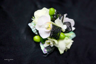 White Orchid, Black and Green Accent