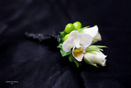 White Orchid, Rose, and Green and Black Accent Boutonniere