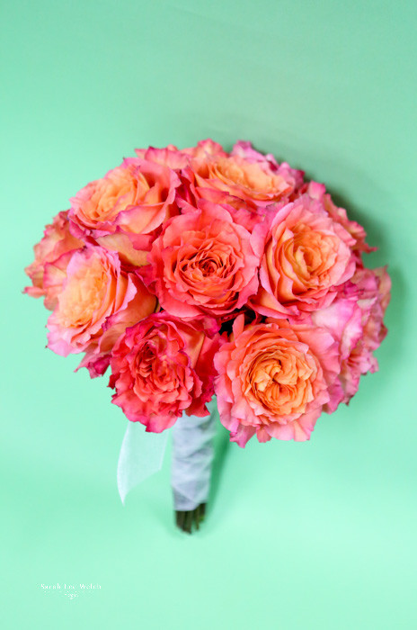 Obsessed with these free spirit roses.