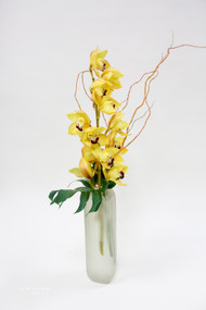 Contemporary Yellow Cymbidium Orchid