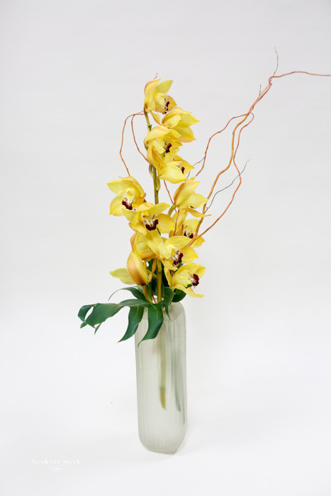 A tall glass vase filled with cymbidium orchids.