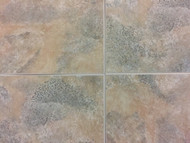 NAFCO Better Living Milestone 12x12 Taupe Gray-$1.89 sq ft.