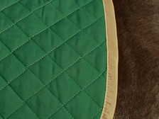 Close up of a Wilker's Dressage Baby Pad