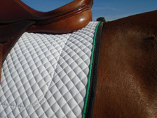 Horse Schooling Pad with Black Trim and Kelly Green Piping Back View