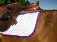 Horse Schooling Pad with Purple Trim and Raspberry Piping Back View