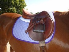 Lilac with Purple Trim Horse Baby Pad Right Side