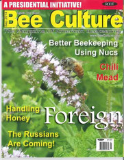 36 Month Bee Culture Print Edition [Foreign]