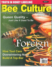 12 Month Bee Culture Print Edition [Foreign]