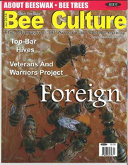 24 Month Bee Culture Print Edition [Foreign]