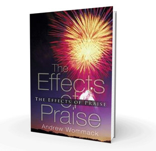 Book - The Effects Of Praise