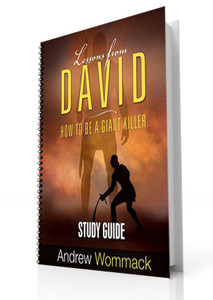 Study Guide - Lessons From David